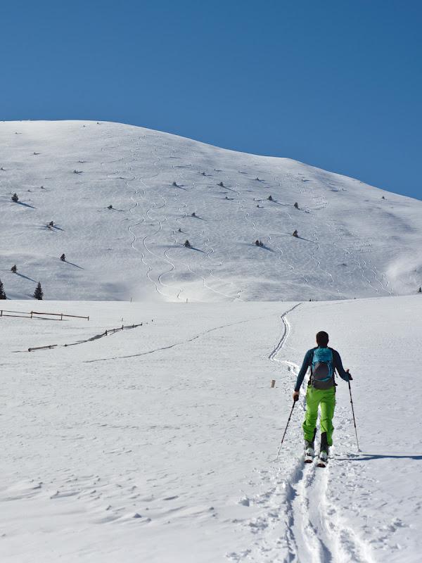 Tataru Ski Touring Arena.