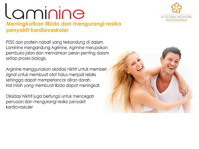 laminine untuk kardivaskular (penyakit jantung)