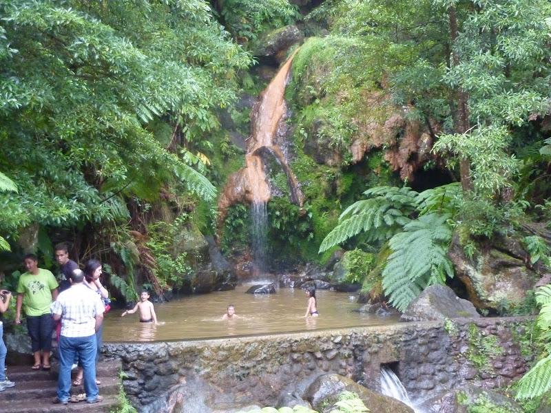 Açores- Natureza viva P1010008