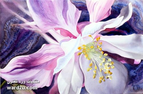زهور نابضه بالحياه فى مائيات Marney Ward