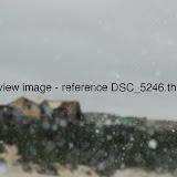 DSC_5246.thumb.jpg