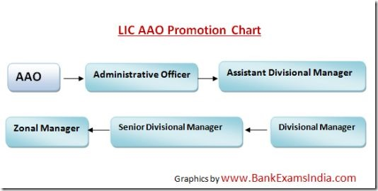 LIC AAO Promotion Policy,LIC AAO promotions,LIC AAO Job Profile,LIC AAO Salary,LIC AAO Exams,LIC AAO Recruitment 2016