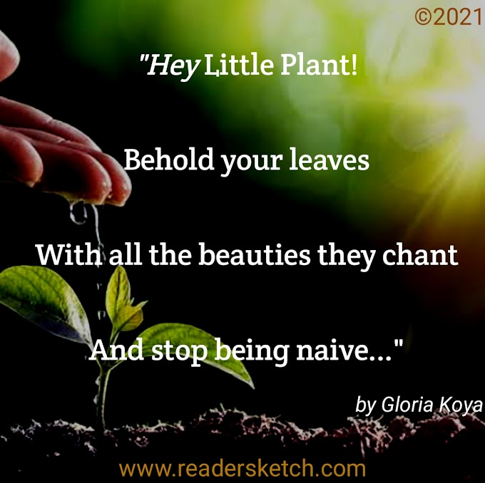 HEY LITTLE PLANT