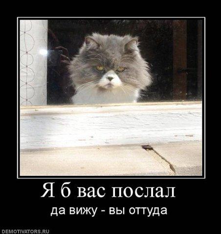 Ни дня без улыбки. Здоровый пессимизм...