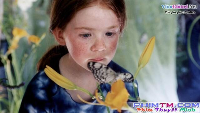 Xem Phim Cánh Bướm - The Butterfly - phimtm.com - Ảnh 1