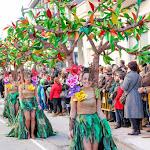 CarnavaldeNavalmoral2015_086.jpg