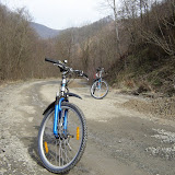 Rocky road to Krizevci 2006