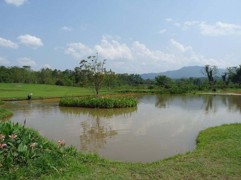 Chine .Yunnan . Lac au sud de Kunming ,Jinghong xishangbanna,+ grand jardin botanique, de Chine +j - Picture1%2B602.jpg