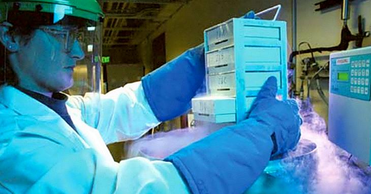 plaquetas criopreservadas