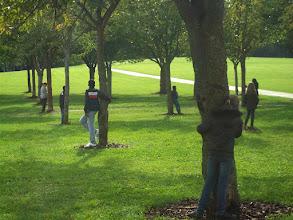 Photo: Arbres - Parc urbain (Crédits Ecole Bourgogne, classe CM2)