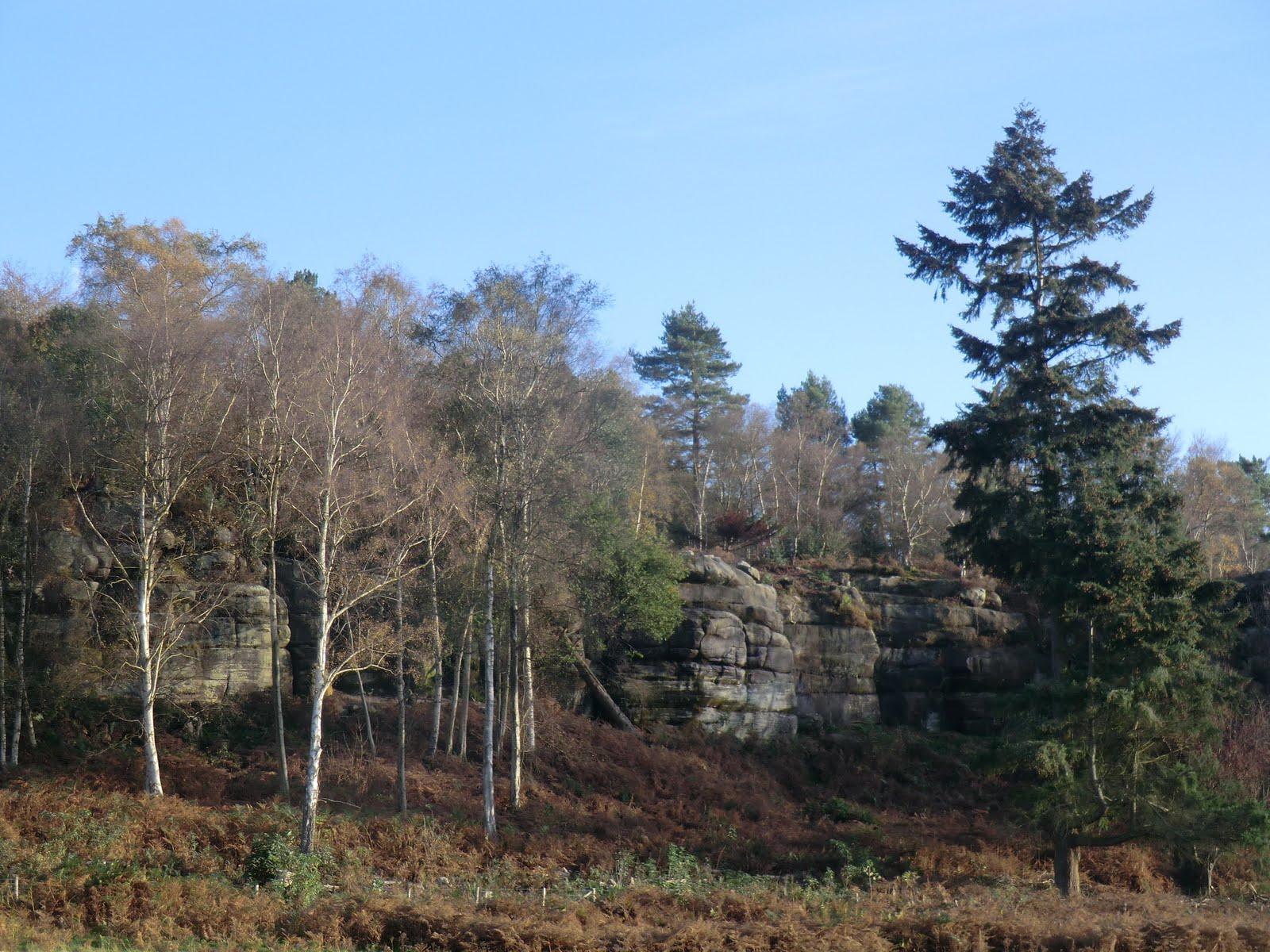 CIMG5708 Harrison's Rocks