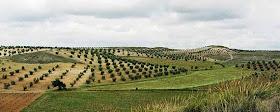 Ayudas y subvenciones para agricultores de la región en 2020
