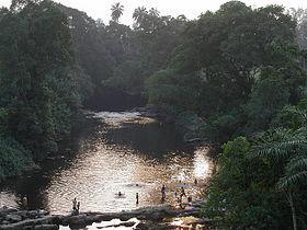 Eight headless bodies found inside a valley in Calabar