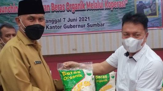 Alhamdulillah! Rakyat Sumbar Bakal Makan Beras Sehat, Gubernur Mahyeldi Launching Beras Organik