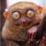 Pavel Tarasso's profile photo