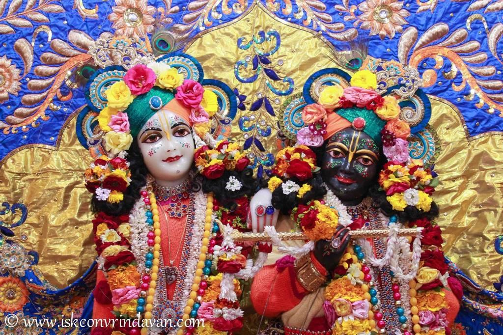 ISKCON Vrindavan Sringar Deity Darshan 03 Feb 2016 (1)