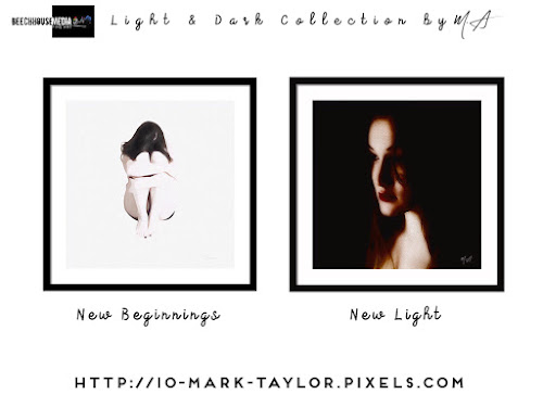 New Beginnings and New Light by Mark Taylor
