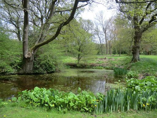 CIMG6374 Pond outside Waystrode Manor