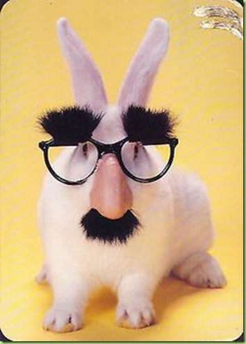 bunny with groucho glasses