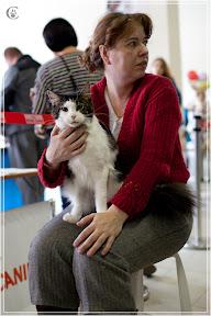 cats-show-24-03-2012-fife-spb-www.coonplanet.ru-069.jpg