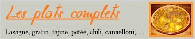 Recettes de Plats complets, lasagnes, gratin, tajine,potée, chili, cannelloni