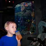 Downtown Aquarium - 116_4022.JPG
