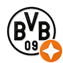 BVB BVB