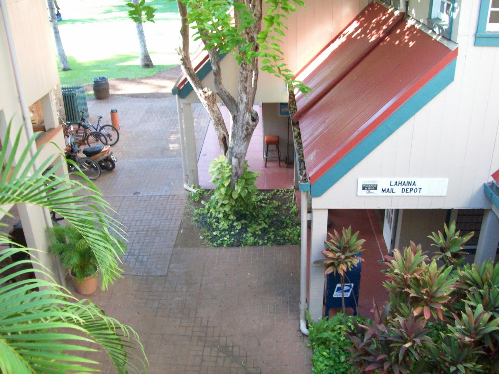 Hawaii Day 5 - 114_1642.JPG