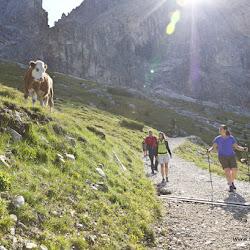 Wanderung Hanicker Schwaige 29.08.16-0101.jpg