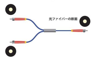 スプリット光ファイバーの構造