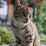Vivek R's profile photo
