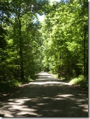 General Dacey Trail