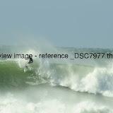 _DSC7977.thumb.jpg