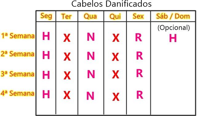 Cronograma Capilar para cabelos oleosos