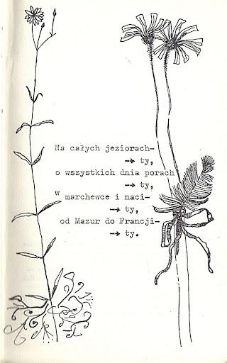 romans!