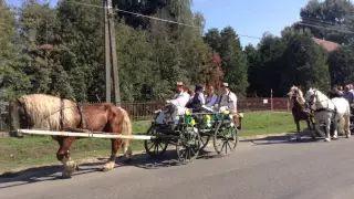 Szüreti felvonulás Jákó 2015 - Jákó, Kossuth Lajos utca video