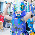 CarnavaldeNavalmoral2015_315.jpg