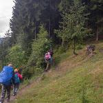 20180629_Carpathians_009.jpg