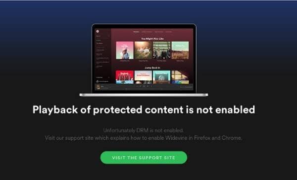 Spotify Web Player Tidak Berfungsi [Diselesaikan] - Panduan Langkah Demi Langkah