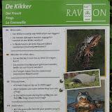 Информация и домик для лягушек