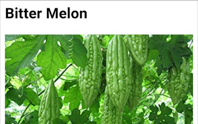 Bitter melon botanical name