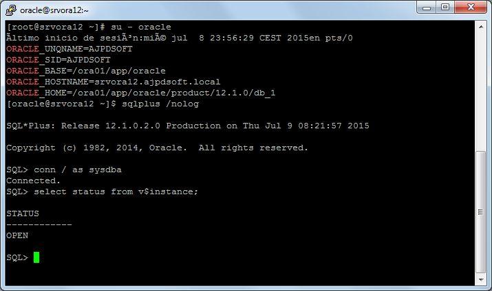 Comprobar acceso a Oracle 12c en Linux CentOS 7 Minimal, verificar instalación, configuración final de Oracle 12c