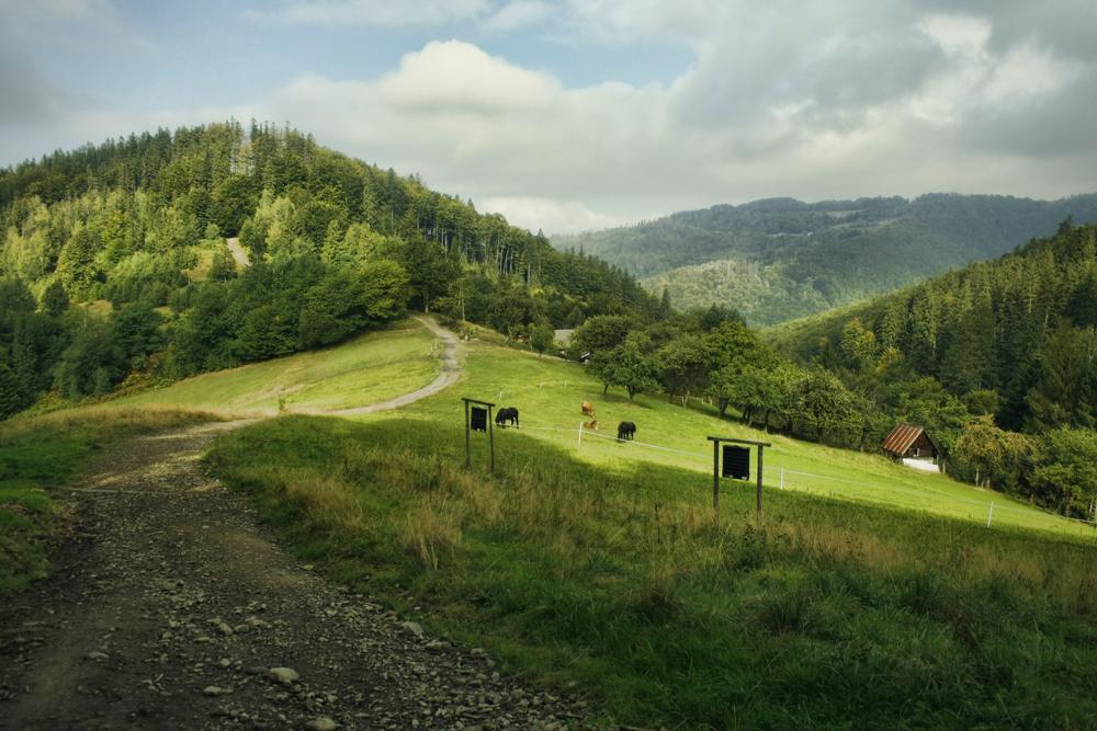 Przełęcz Beskidek