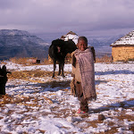 I94 Snow, Cows, Boy Malealea.jpg