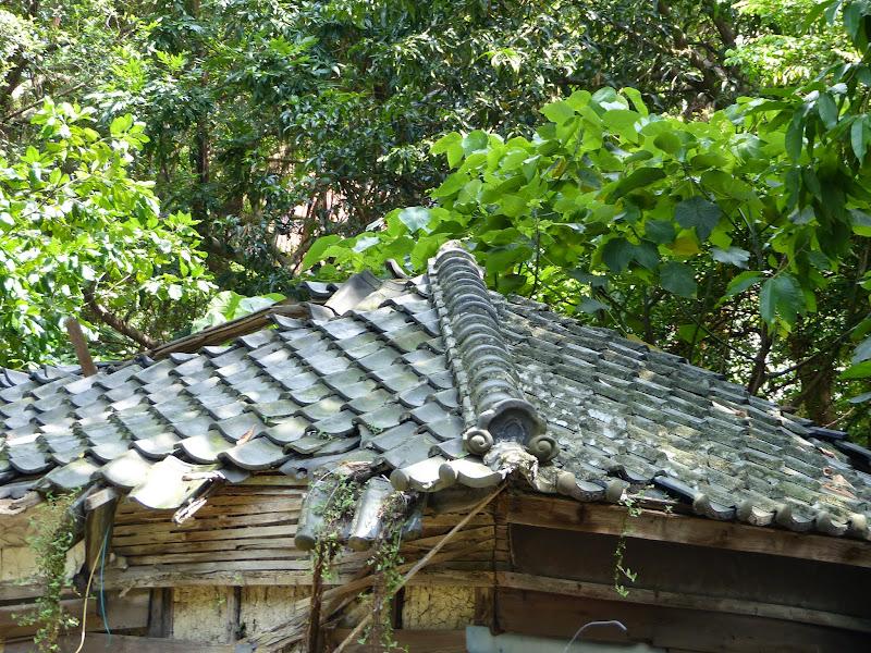 Taipei. Librairie Eslite, et deux maisons japonaises restaurées (dédiées à la poésie) - P1240963.JPG