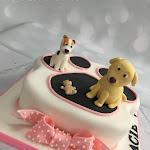 Paw print cake 5.JPG