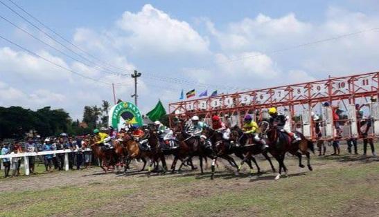 Tuan Kejurnas Pacuan Kuda Piala Presiden, Yogya Sediakan 500 Test Swab Gratis