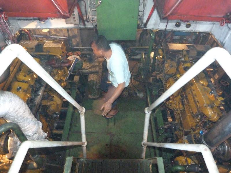 Dauin, Dumaguete, APO Island (Negros) - philippines%2Bdeux%2B583.JPG
