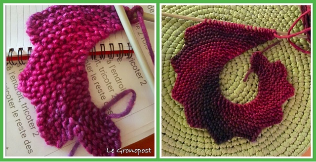 tricoter queue de dragon