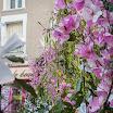 2016-05-07 Ostensions Aixe sur Vienne-8.jpg